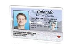 For Colorado Only Non-commercial License Students Driving Spring Getting Esl Use licensed A Institute